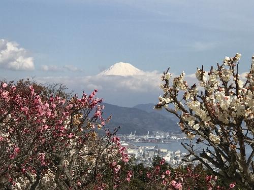 日本平ホテルから見た富士山