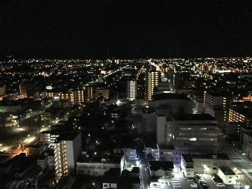 日本平ホテルから見る富士山
