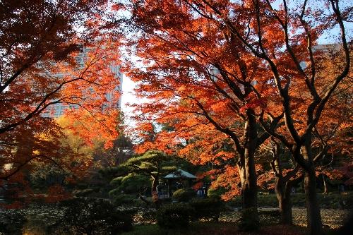 01 日比谷公園の鶴の池