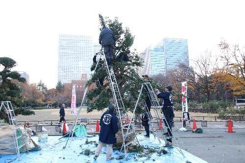 09 日比谷公園での匝瑳市植木職人の実演