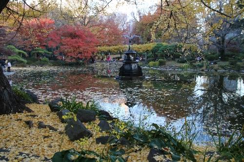12 日比谷公園内の鶴の噴水の池