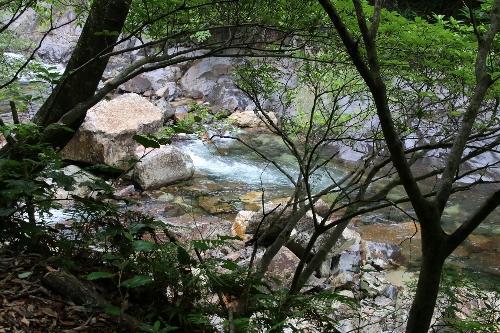 大川の滝からの清流