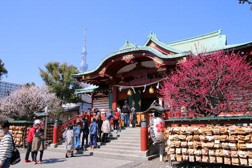 本殿の両脇には、向かって右が紅梅、左手が白梅の大きな木