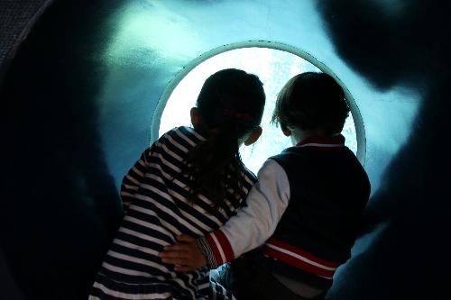 箱根園水族館で、直系くんが孫娘の背中に手をやっている