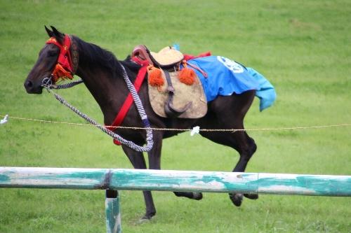 甲冑武者が落馬して、馬がそのまま走って行ってしまう