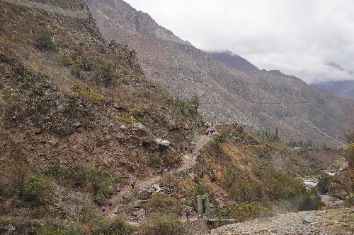 昔のインカ道を歩くツアー(インカ・トレイル)