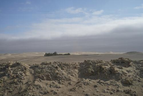 リマからイカ飛行場に向かう途中は砂漠地帯