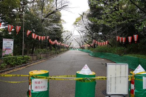 例年は花見客で盛り上がる上野公園も閉鎖