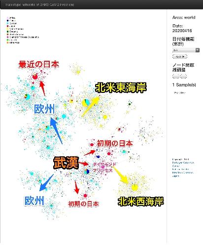 国立感染症研究所による新型コロナウイルス伝播DNA解析(漢字と矢印は、筆者の追加)