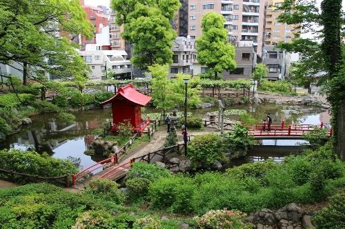 須藤公園を見渡す