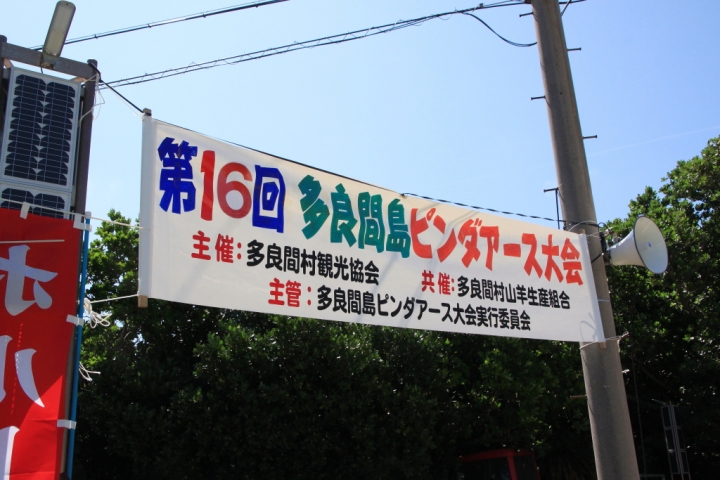 IMG_1201_011.JPG