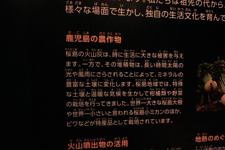 IMG_0743_011.JPG