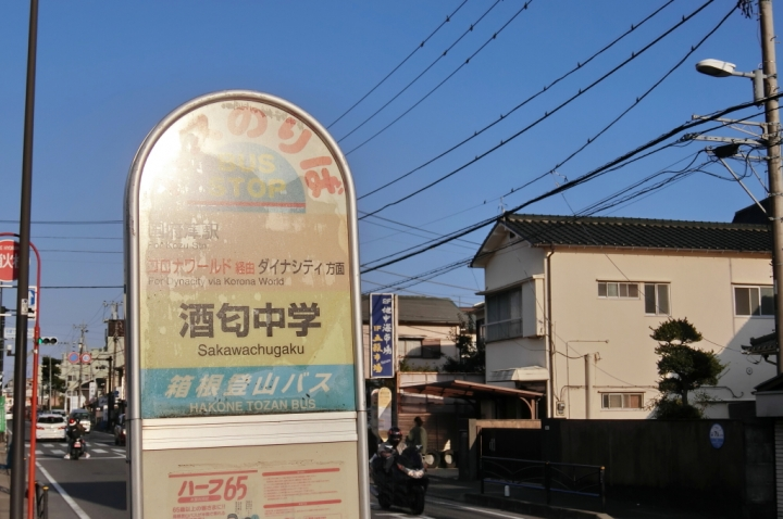 CIMG2489_011.JPG