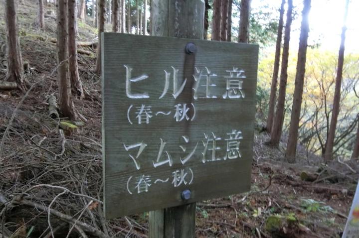 CIMG2560_011.JPG