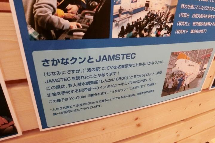 CIMG4637_011.JPG