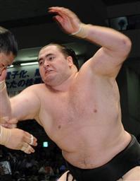 スモウキーな相撲界 | INTERBREE...