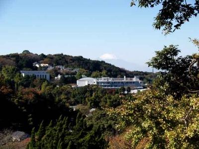 円覚寺鐘楼からの眺望