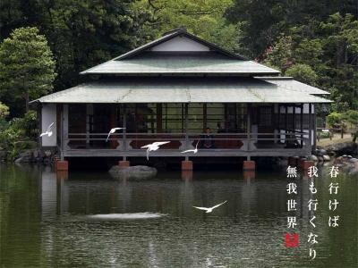 清澄庭園の茶屋