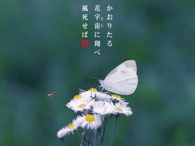 川村カオリ追悼