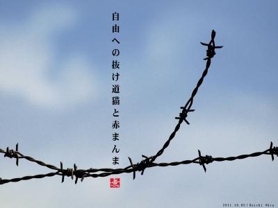 自由への抜け道