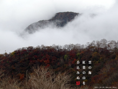 雲海の紅葉山