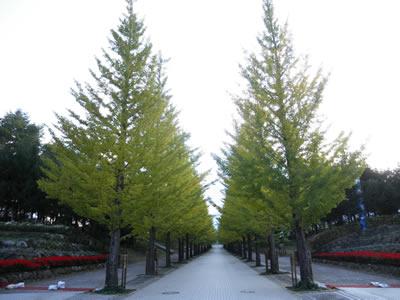 福島の民家園