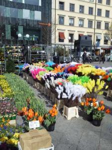 エステルマルムの広場