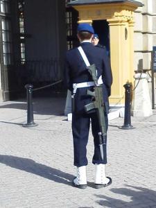 衛兵さんの銃剣1