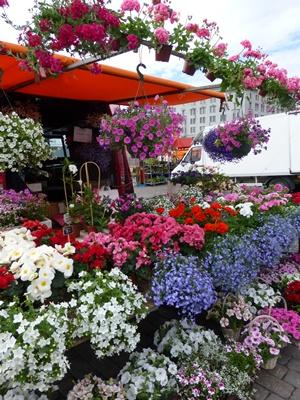 ヘルシンキ マーケット お花