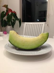 melonsama