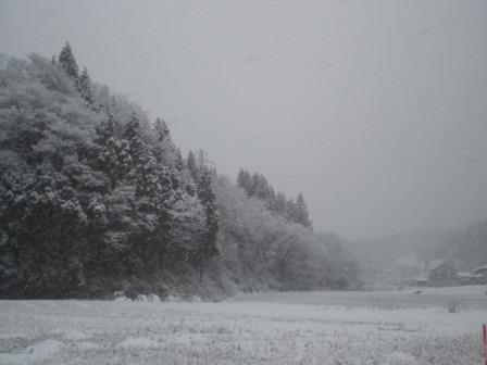 雪がしんしんと・・・