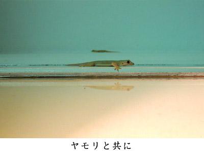 34_18.jpg