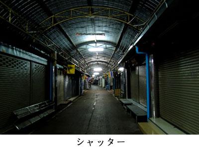 41_06.jpg