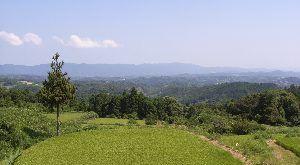 神野山の中腹からの眺め