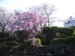 suidouyama