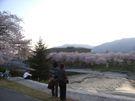 gose katsuragigawa