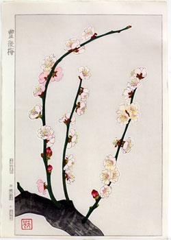 葛原輝「豊後梅」木版画シート