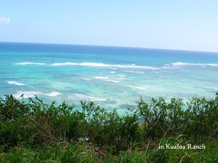 クアロア海