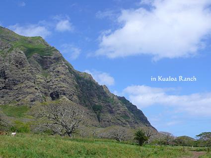 ハワイ岩山