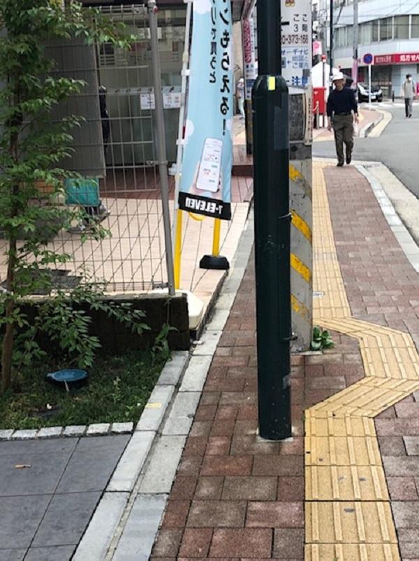tenji_20200612_002.jpg