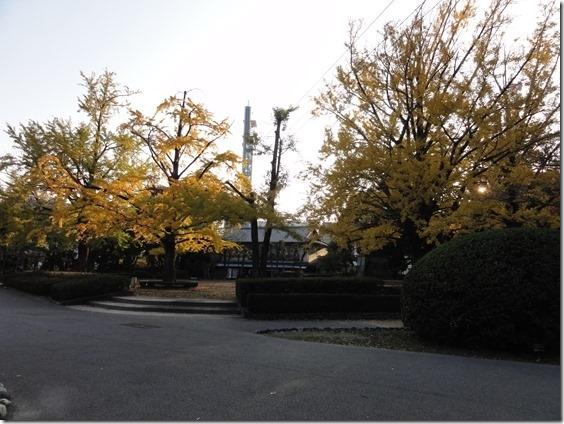 2013-11-24 072