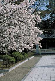 名和神社(鳥取県西伯郡大山町御来屋)