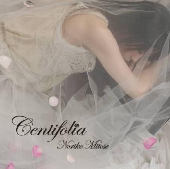 centifolia_jk