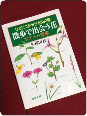 book_zukan