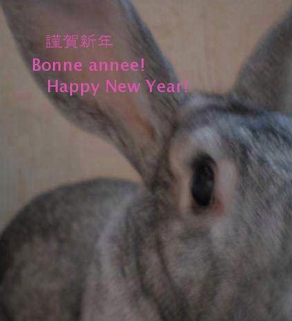 新年のご挨拶ごんごん.jpg