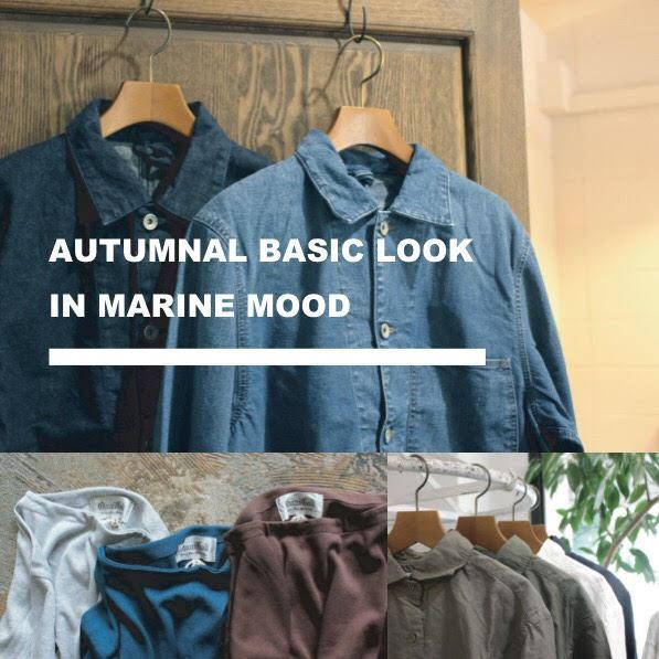 Autumnal basic look in marine mood FAIR