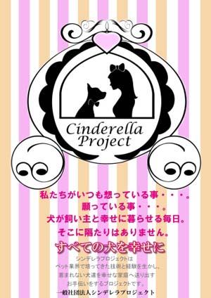 シンデレラプロジェクト
