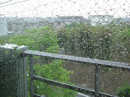雨粒、雨粒、雨粒