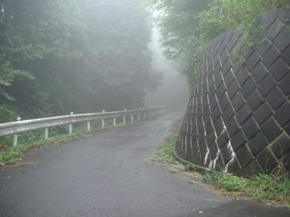 入山峠からのすぐの下り