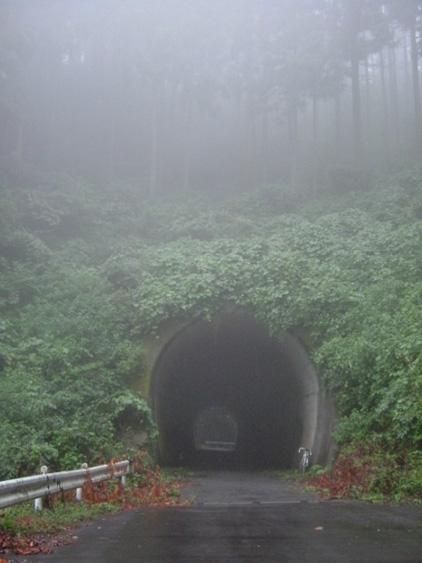 夏向きのトンネル!?